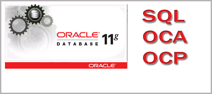 sql expert Software as a service - oracle customer experience cloud oracle cpq cloud oracle marketing cloudoracle sales cloudoracle service cloud software as a .