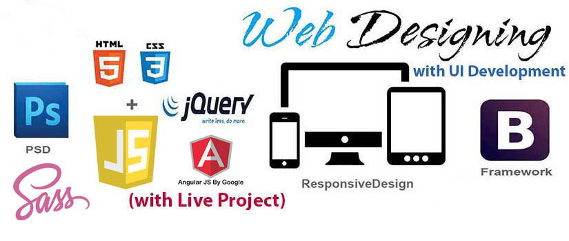 Web Designing Course In Noida Best Web Design Training Institute